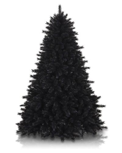 Ель декоративная черная